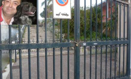 """Piano di Sorrento/ """"Avremo il parco di Petrulo per i cani"""", l'annuncio di Francesco Di Guida (VIDEO)"""