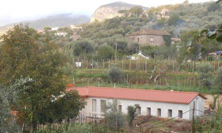 Sant'Agnello/ Il Comune ora porta i randagi ad Avellino. A quattro anni dalla stipula della convenzione non c'è più traccia del canile di Trasaella