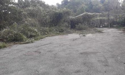 """Piano di Sorrento/ Dopo la denuncia del WWF, il Sindaco Iaccarino fa ripulire il cimitero della """"Munnezza"""" ai Colli"""
