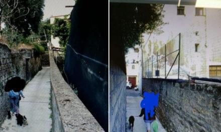Sant'Agnello/ Anche il Sindaco Sagristani dichiara guerra alle cacche