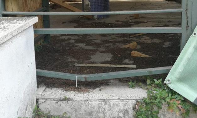 Piano di Sorrento/ Ignoti forzano le recinzioni e tornano nella scuola abbandonata