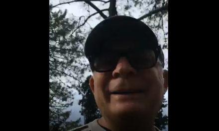 Sorrento/ C'era una volta la pineta delle Tore: la video-denuncia dell'avvocato Giulio Renditiso (VIDEO)