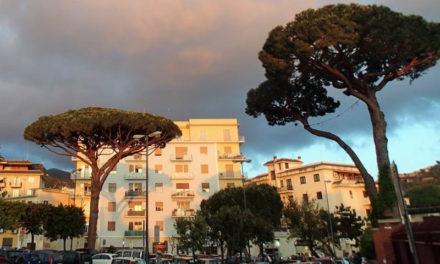 """Piano di Sorrento – Sant'Agnello/ La voragine a Piazza Mercato è una bufala, volevano fare la """"festa"""" all'albero: parlano Claudio d'Esposito (WWF ed il vice-Sindaco Pasquale D'Aniello"""