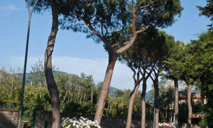 Sant'Agnello – Ultim'ora/ Via dei Pini a rischio: strada chiusa, salta anche il mercato