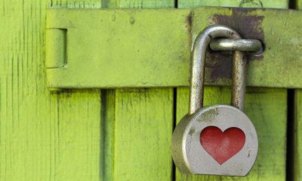 Il cuscino di Maelka / Pin, password, username: accesso negato