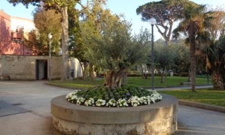 """Piano di Sorrento/ """"A Villa Fondi ad ogni cambio stagione spendono migliaia di euro in fiorellini: è consumismo applicato al giardinaggio"""": Claudio d'Esposito critica gli interventi in tema di verde pubblico dell'Amministrazione"""