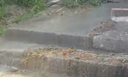 Meta/ Cascata di liquami scende giù vicino al cimitero (VIDEO)