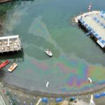 """Sant'Agnello/ """"Scempio ambientale alla Marinella"""": la denuncia del WWF"""