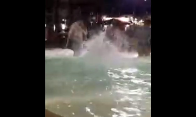 Sorrento/ Gara di tuffi a cufaniello nella vasca piscina di Piazza Lauro (VIDEO)