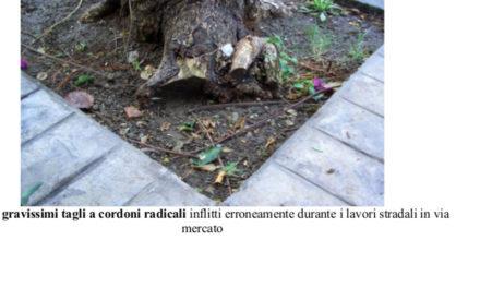 """Piano di Sorrento/ Hanno fatto i lavori al marciapiedi una """"chiavica"""" ed ora tagliano di alberi in via Mercato"""