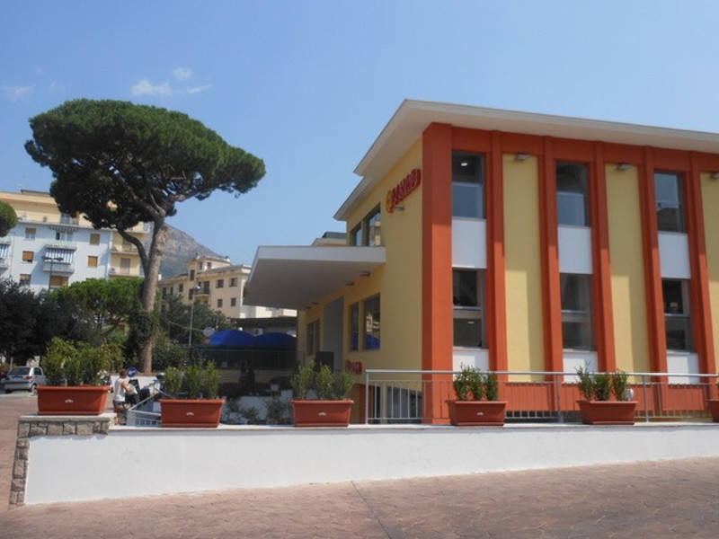 """Piano di Sorrento – Sant'Agnello/ """"Vogliono nuovamente abbattere il pino di Piazza Mercato"""": l'allarme di Claudio d'Esposito (WWF)"""