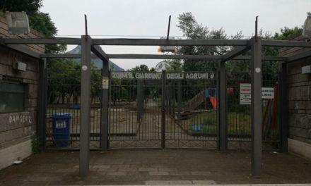 Meta/ Il Giardino degli Agrumi resterà chiuso per tutta l'estate, la riapertura a data da destinarsi
