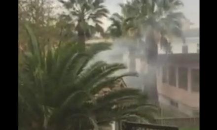 Sant'Agnello/ Roghi accesi persino nei pressi della scuola materna (VIDEO)
