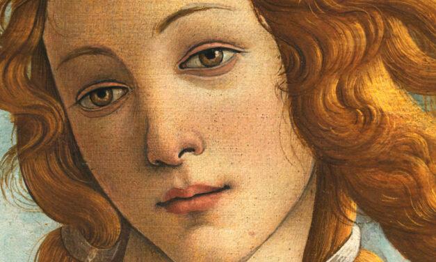 Scacco all'arte / Sandro Botticelli