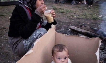 """Penisola sorrentina/ """"Qui per accoglienza si intende solo il bussiness"""": la delusione di Gaetano Mastellone sulla vicenda profughi afghani"""